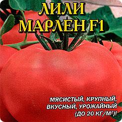 ЛИЛИ МАРЛЕН